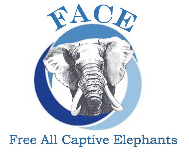 Free All Captive Elephants