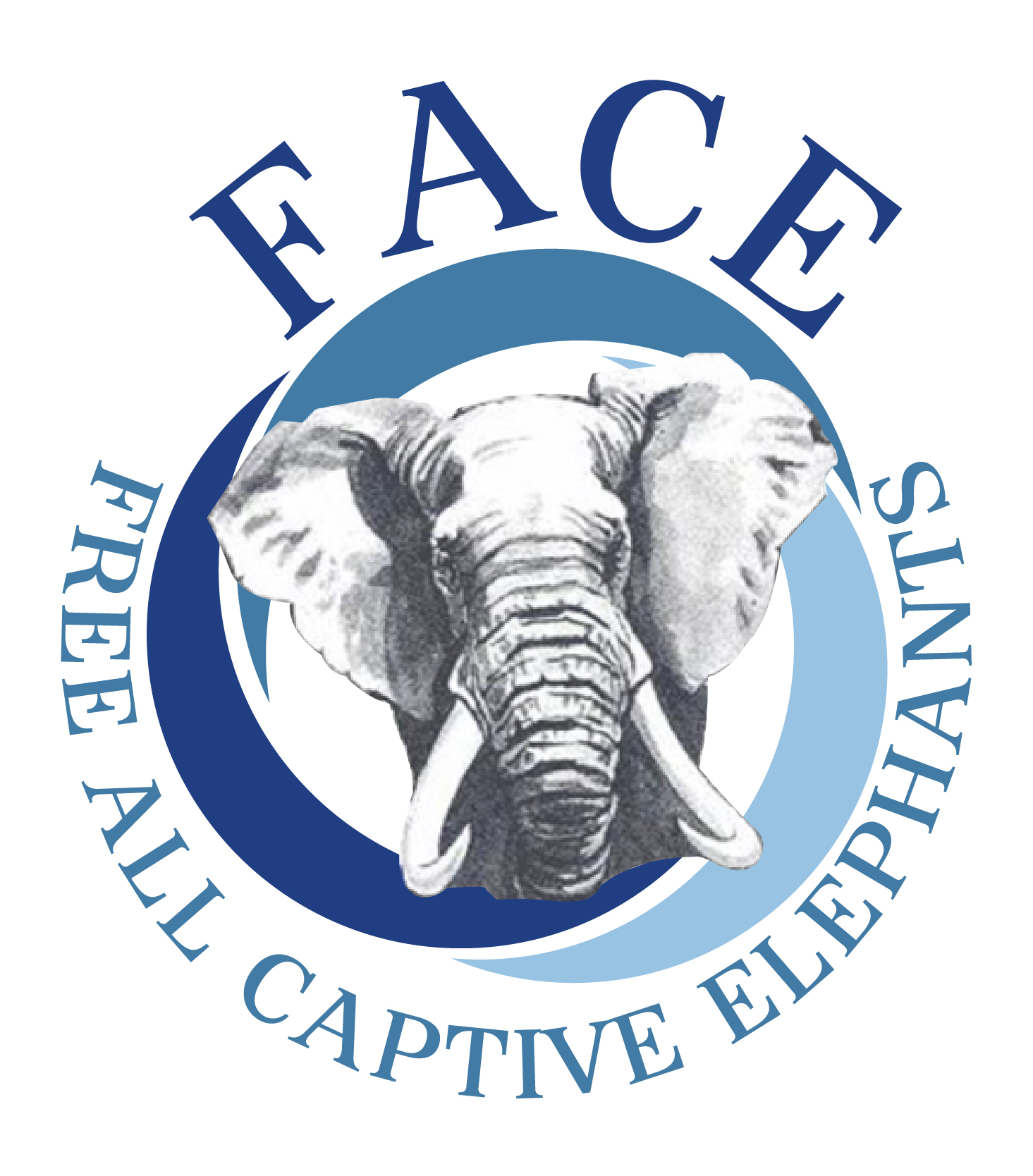 Free All Captive Elephants